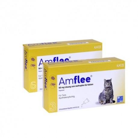 Amflee Spot-On Kat