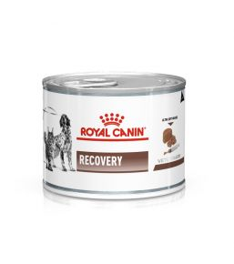 Royal Canin Recovery - Natvoeding
