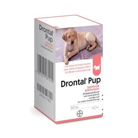 pup met diarree