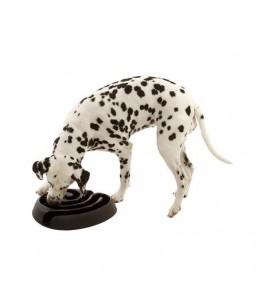 Buster DogMaze antischrokbak